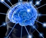 Sistema Neuronal