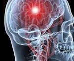 resultados estudios medula