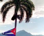 cuba palmeras