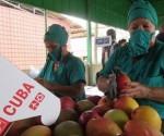 Cuba produccion agricola